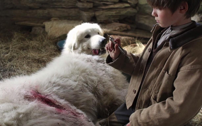 Il dit à Sébastien qu'il doit faire une piqure à la chienne