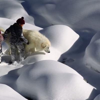 216) Ils traverse un ruisseau gelé