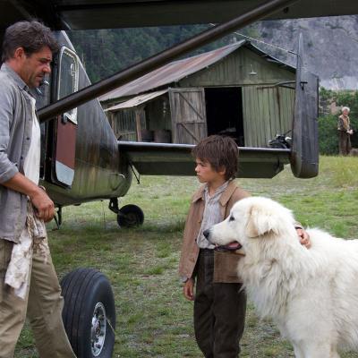 37) Pierre déteste les chiens