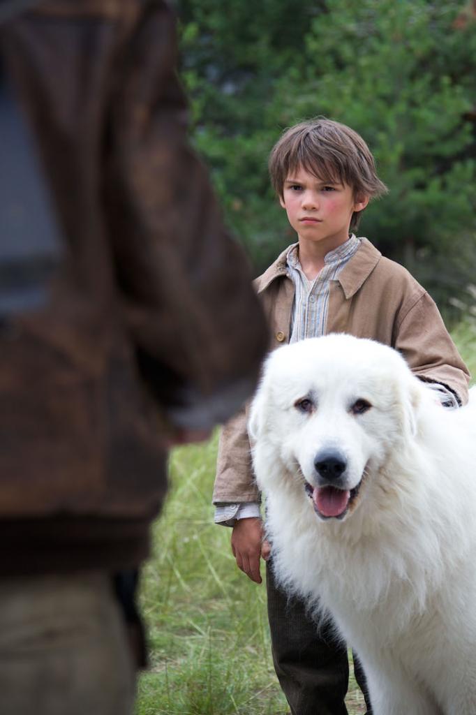 38) Pierre déteste les chiens