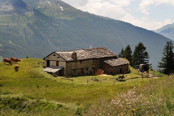 Une ferme de montagne