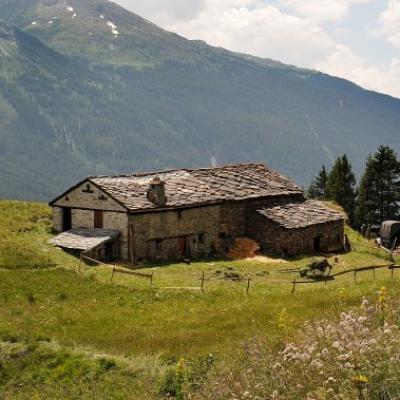 54) Une ferme de montagne