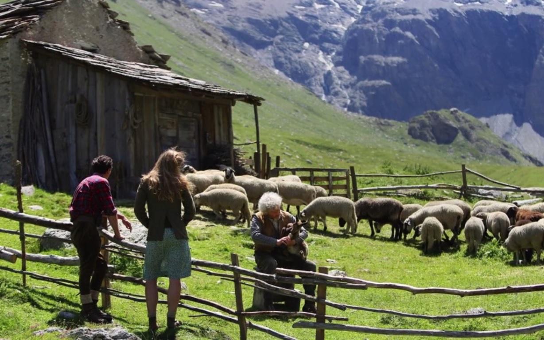 Guillaume et Angelina sont venus parler à César à la bergerie