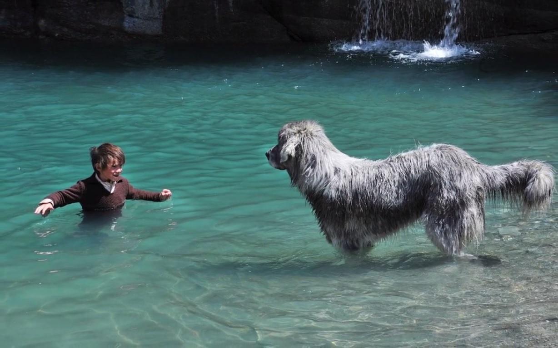 Son chien est trop sale, Sébastien décide de le laver