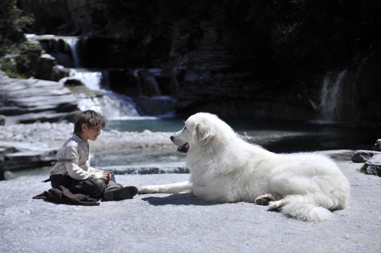 Sébastien trouve son chien très beau