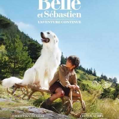 Belle et Sébastien, l'aventure continue (film)
