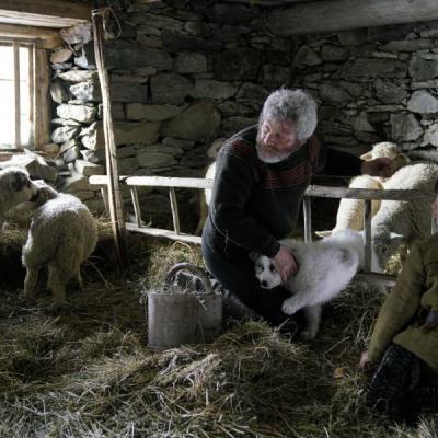 César et Sébastien dans la bergerie