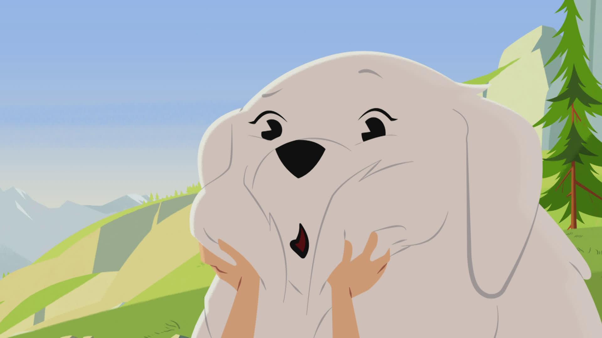Belle chien de berger - 1